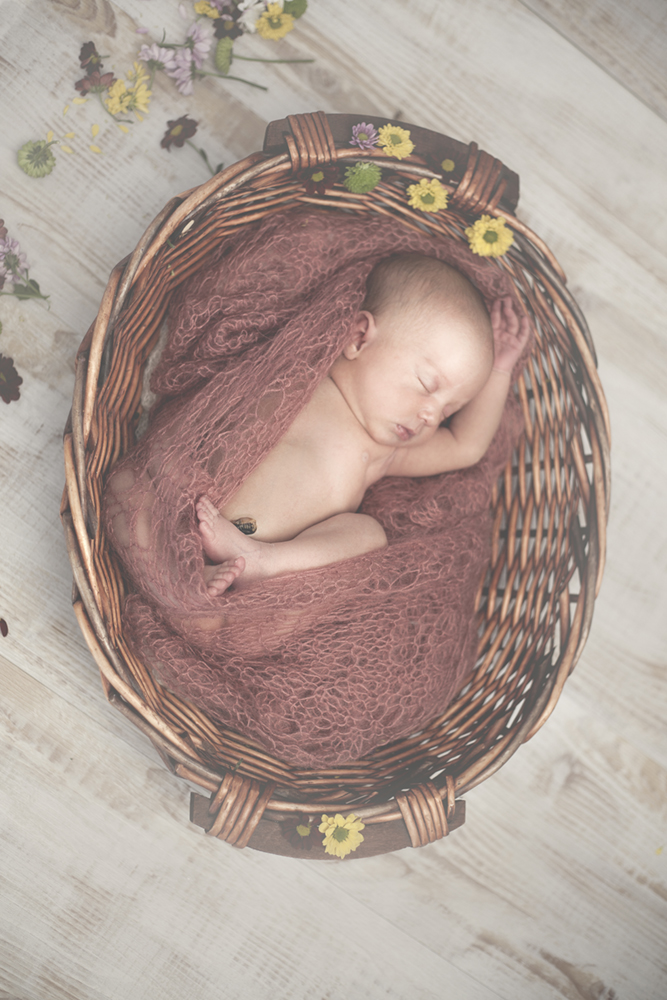 Pongrácz Rita újszülött fotózás 15